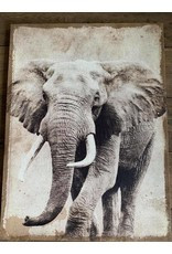Damn Olifant op canvas