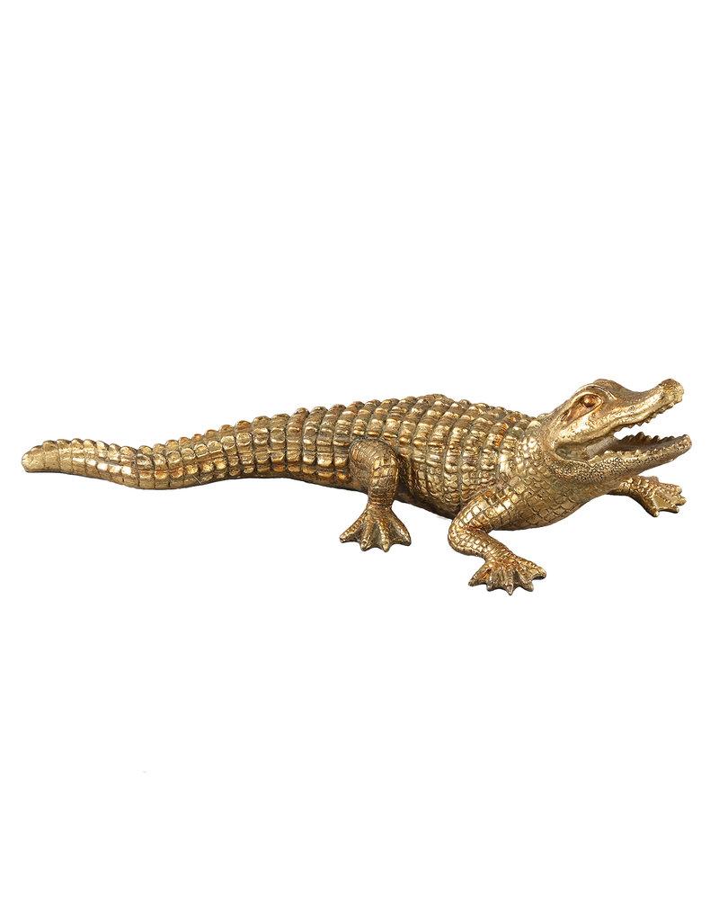 Damn Krokodil goud