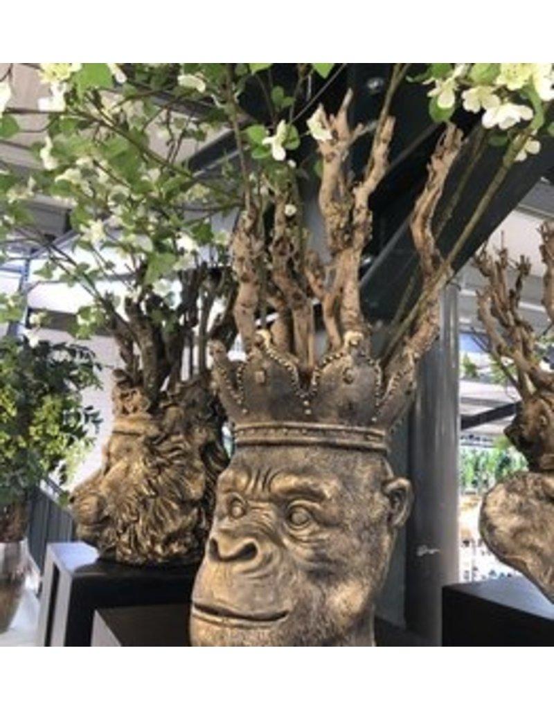 Damn Plantenpot aap 42 cm