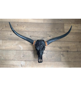 Damn Long Horn engraved 1 meter wide - Copy