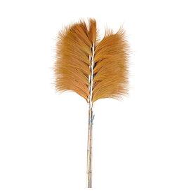 Damn Fluffy grass dried 210 cm