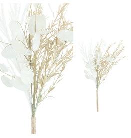 Damn Bosje witte zilveren dollar bladeren