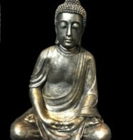 Damn Buddha mediteren groot