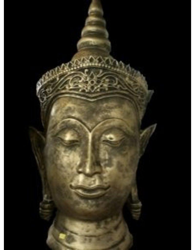 Damn Boeddha hoofd groot ( punt)