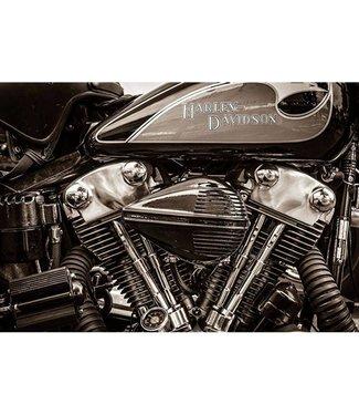 Glas Art Glas art - Harley Davidson