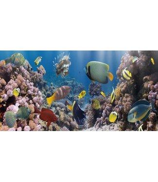 Glas Art Glas art - Tropisch Aquarium
