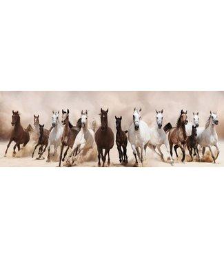 Glas Art Glas art - Wild Horses