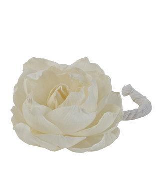 Durance Witte roos voor geparfumeerd bouquet
