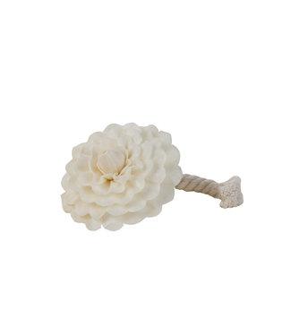 Durance Camelia voor geparfumeerd bouquet