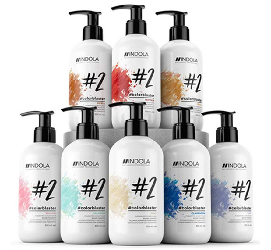 Color Blaster Pigmented Conditioner #2 - 300ml