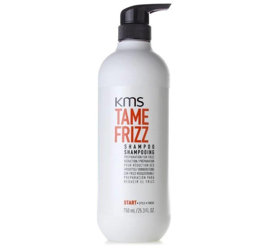 TameFrizz Shampoo
