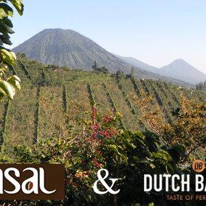 Dutch Barista Coffee Miramar - El Salvador