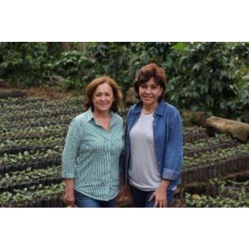 Dutch Barista Coffee Nicaragua - Finca Bethania