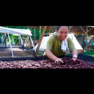 Philippines Auro Harana 72%