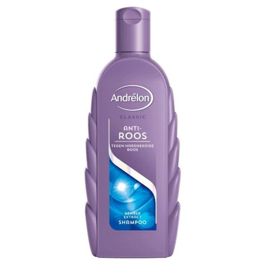 Andrélon Shampoo anti roos gemberextract-1
