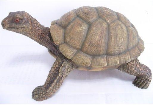 Schildpad Herman woodstone
