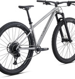 SPECIALIZED 2020 FUSE EXPERT 29 BRSH/CMLN L
