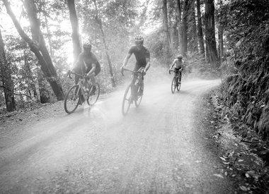 Adventure/Gravel Bikes