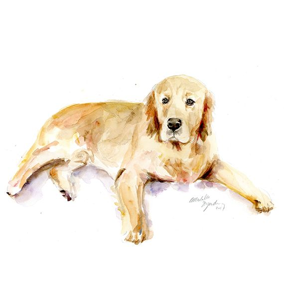 Commissioned watercolor painting of a dog