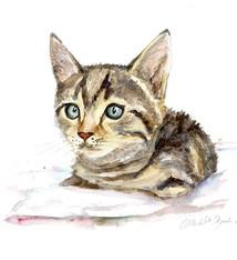 Kat of poes schilderij in opdracht