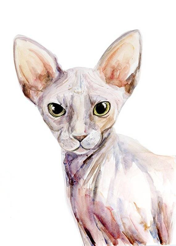 Commissioned watercolor painting of a cat