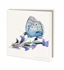 Butterflies and Insects greeting cards