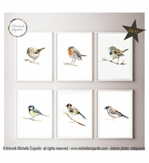 Set of 6 European Birds