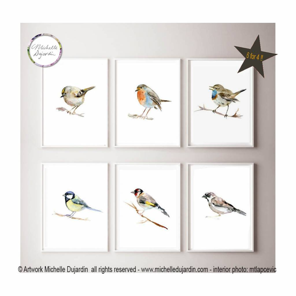 6 prints of bird watercolour paintings