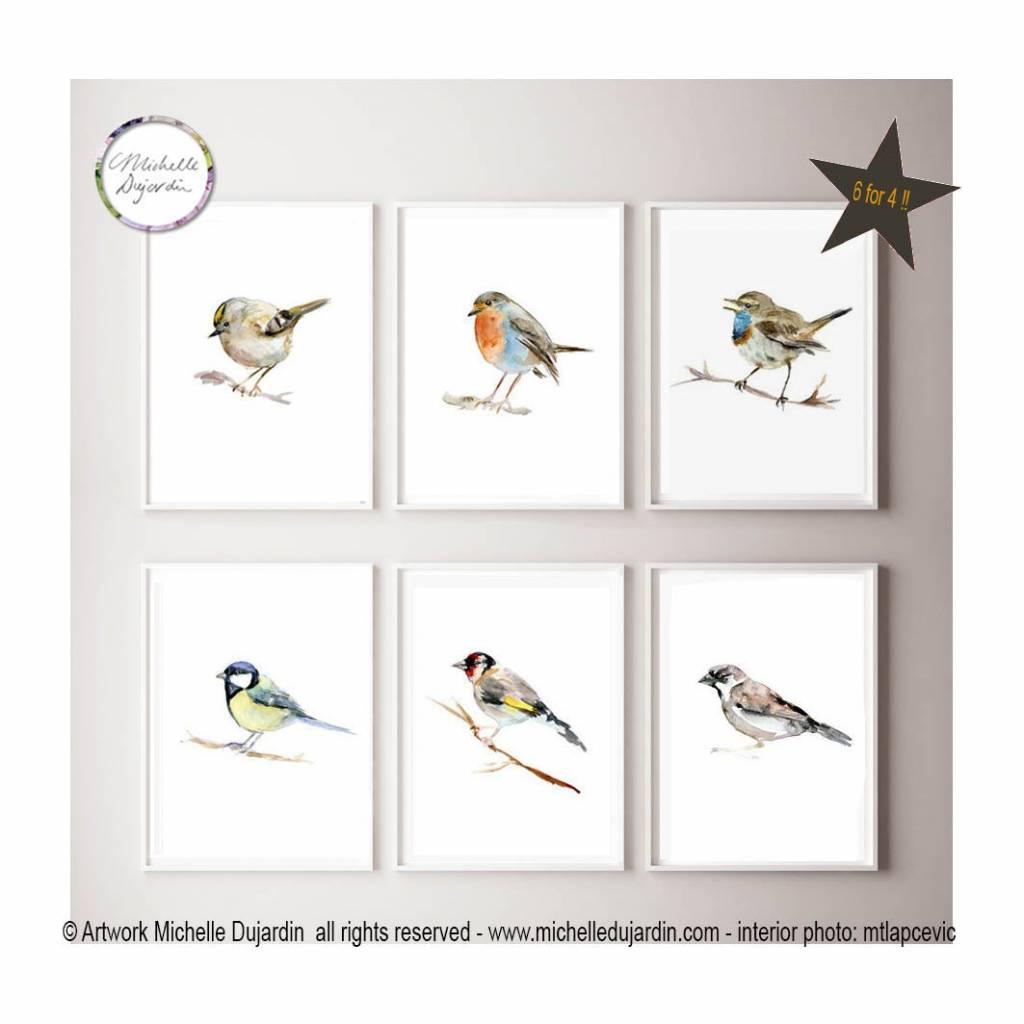 6 prints van vogel aquarel schilderijen