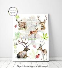 Deer species poster
