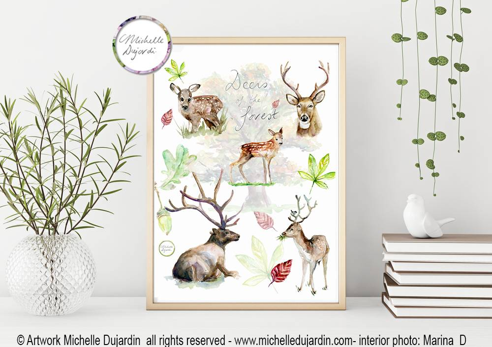 Deer species Fine Art Print
