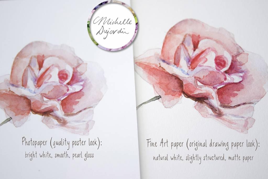 Set van 2 pimpelmees aquarel schilderijen