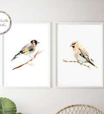 Set of 2 birds - Goldfinch and Bohemian Waxwing