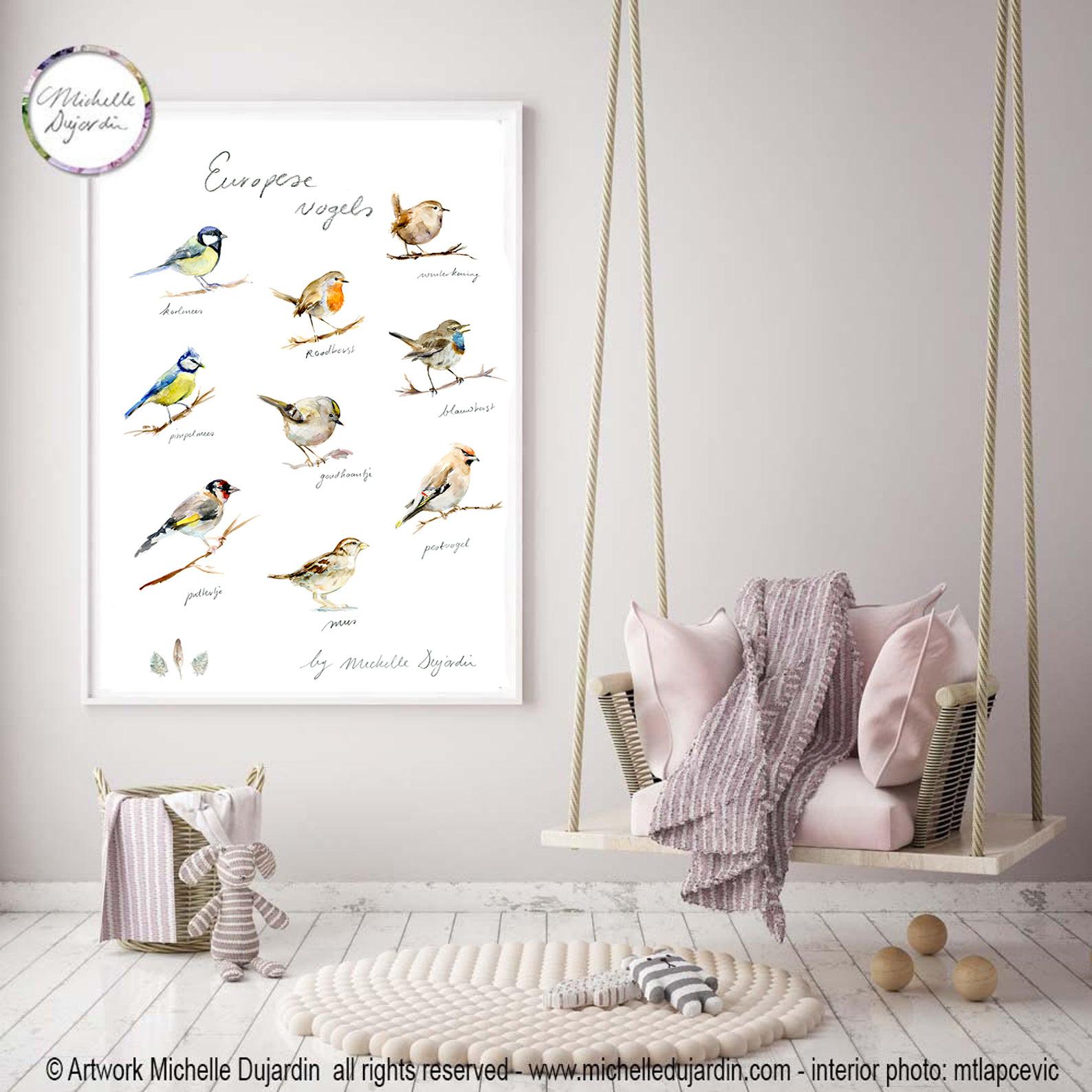 European bird species Fine Art Print