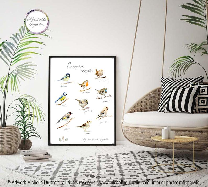 Verschillende Europese vogelsoorten giclee print