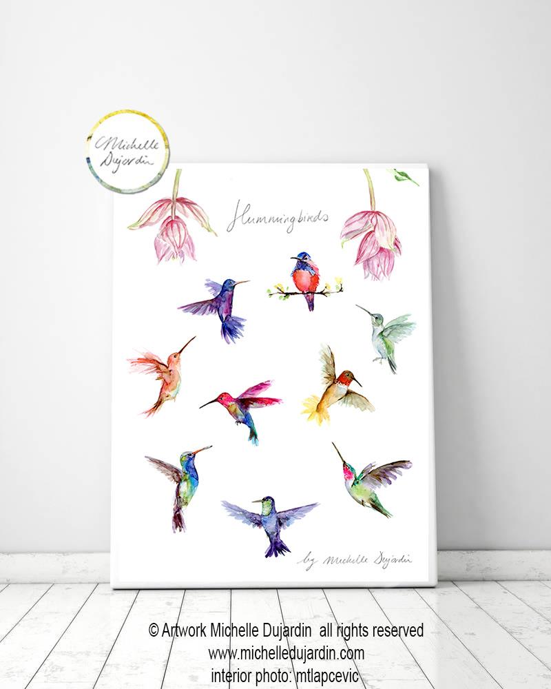 Hummingbird species Fine Art Print