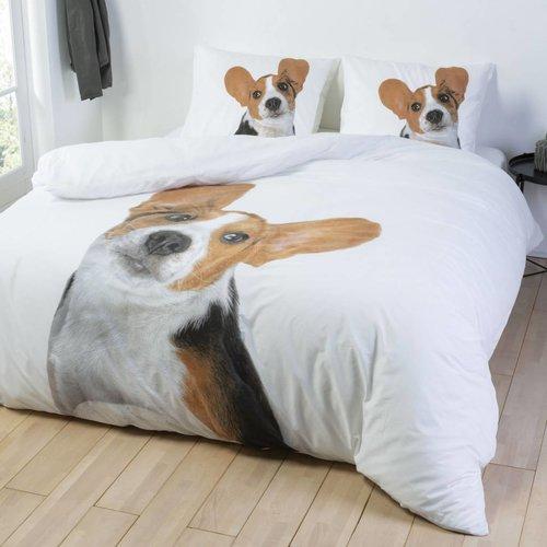 Essara Beagle