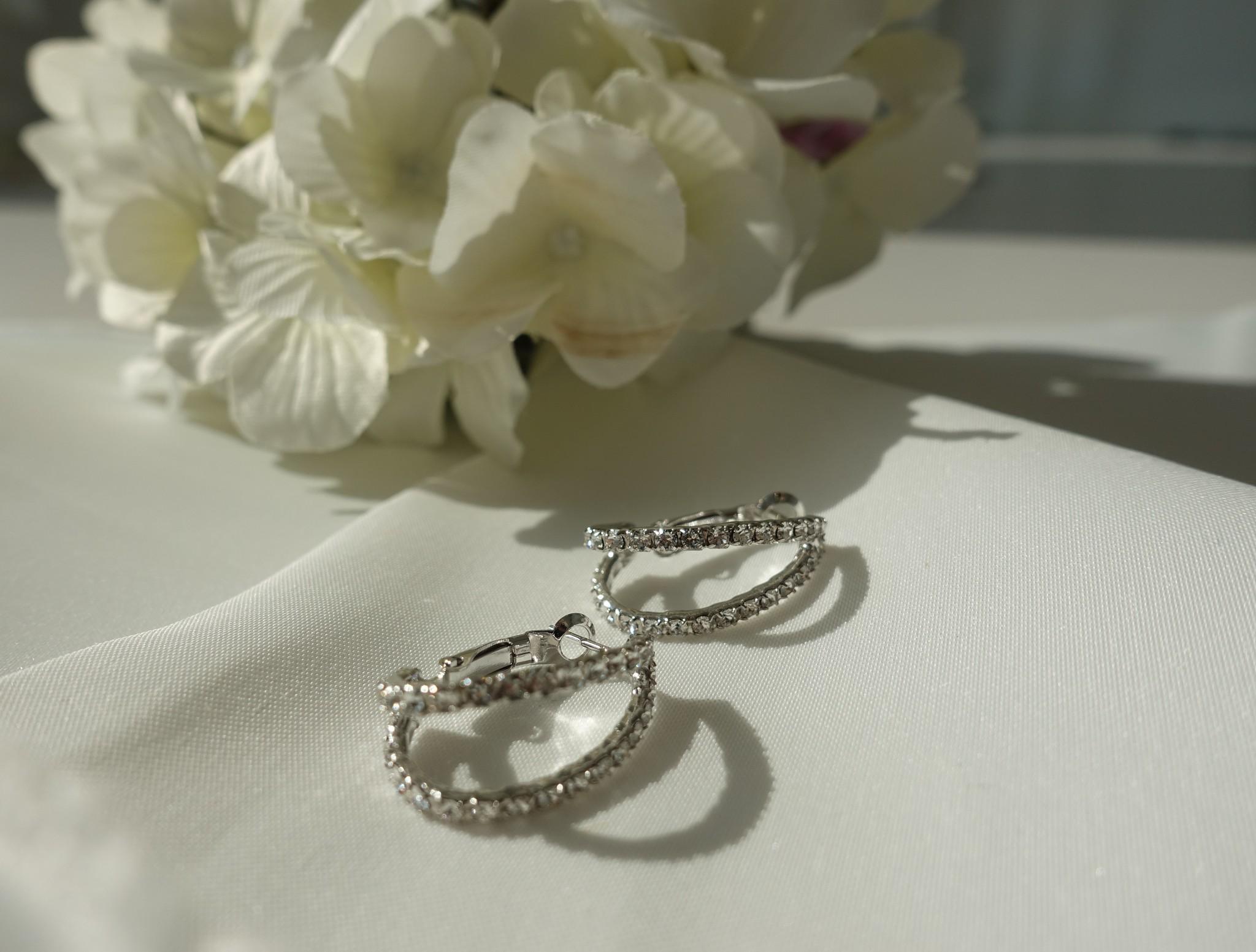 Zilveren oorbellen, dubbele ring-1