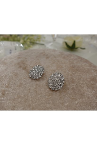 Ovalen diamanten knopjes