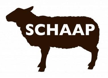 Schapenvlees