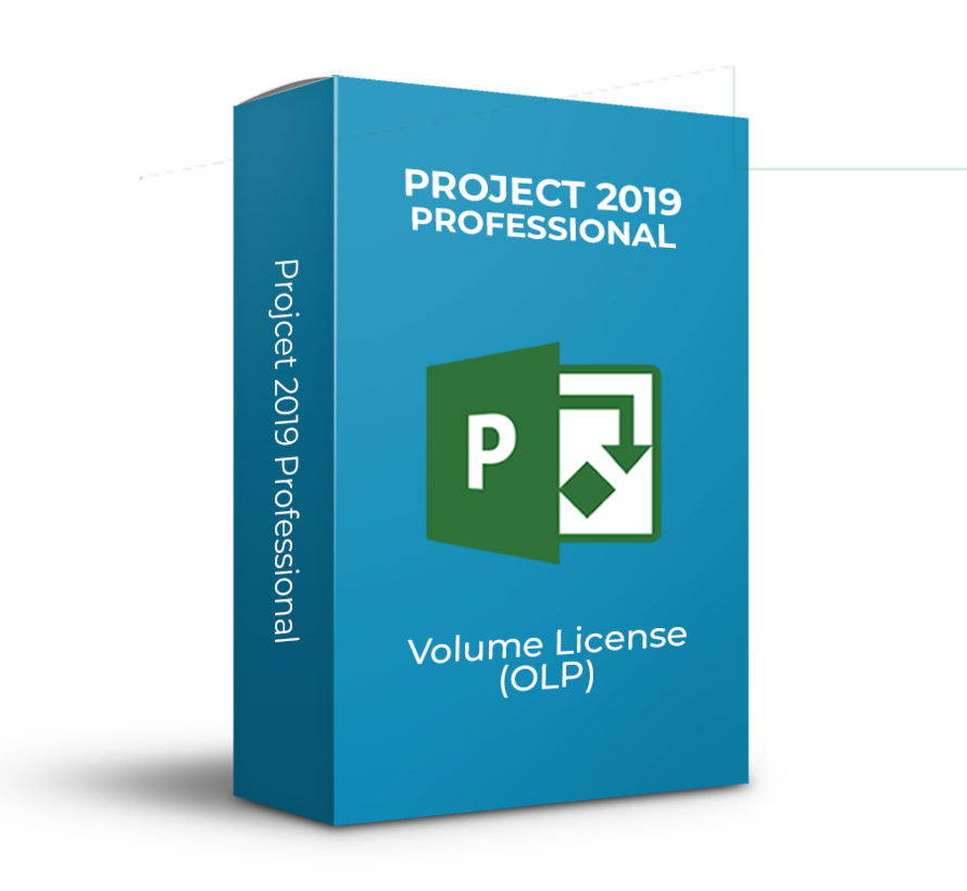 Project 2019 Professional - Volume Licentie