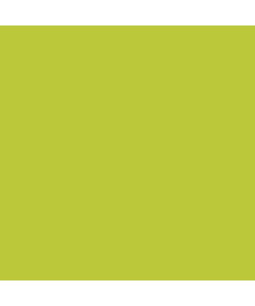 Placemat Airlaid Kiwi 40x30 bestellen