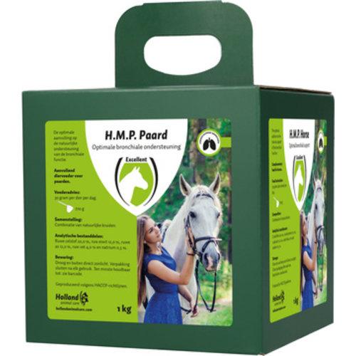 Excellent HMP-Horse
