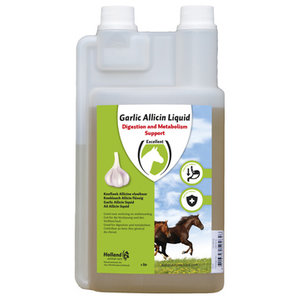 Excellent Garlic Allicin Liquid EU (Knoflook vloeibaar)