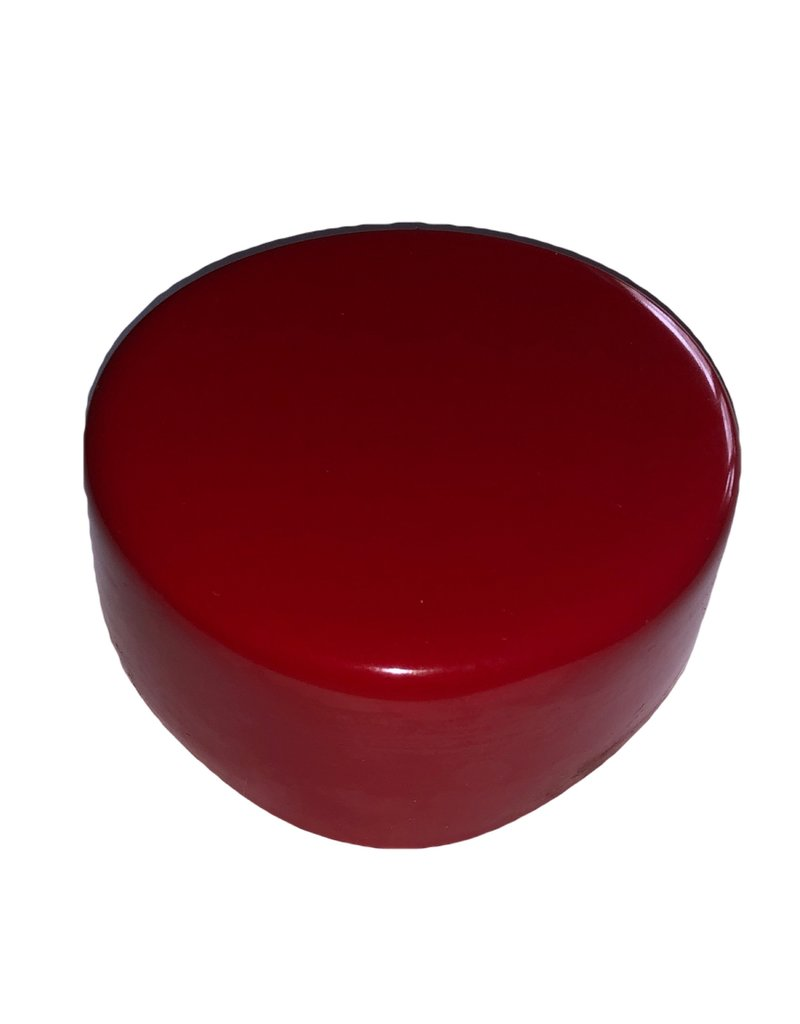 Beschermdop Rood  ø 10 cm voor hindernisbalken  - Copy
