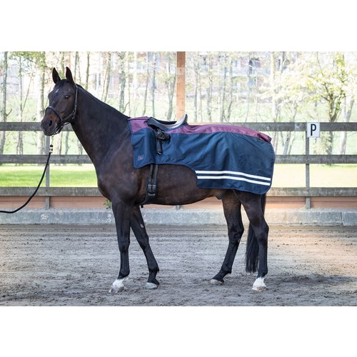 Harry's Horse Uitrijdeken 0gr fleece