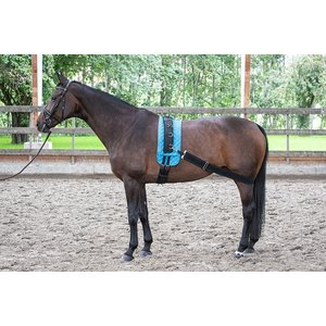 Harry's Horse Longeerband elastisch