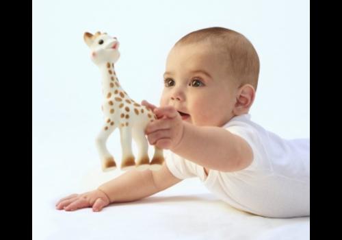 Sophie de giraf in geschenkverpakking