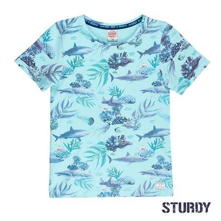 Sturdy Sturdy T-shirt aop scuba mint
