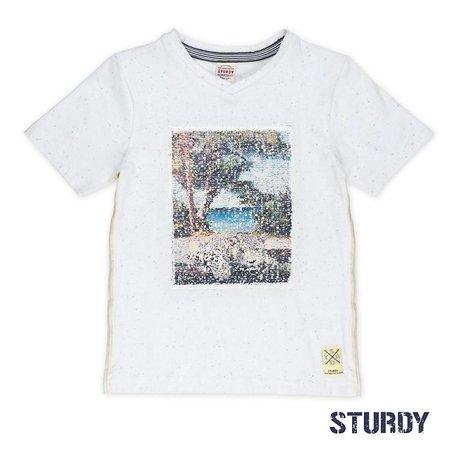 Sturdy Sturdy T-shirt flipping artwork sunray wit